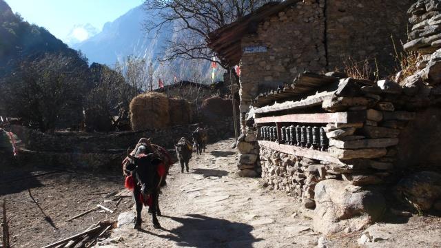 Weiter den Budhi Gandaki hinauf